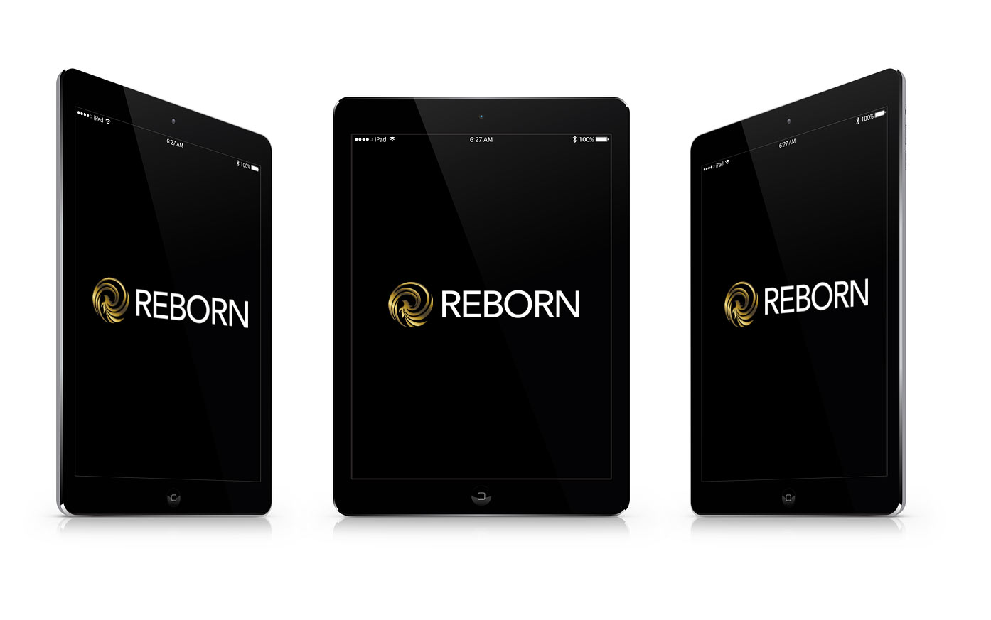 iPad Air 16Go reconditionné à neuf REBORN